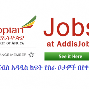 Ethiopian Airlines Vacancy – ASSISTANT COOKS
