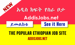ethiopian-jobs-addisjobs-website