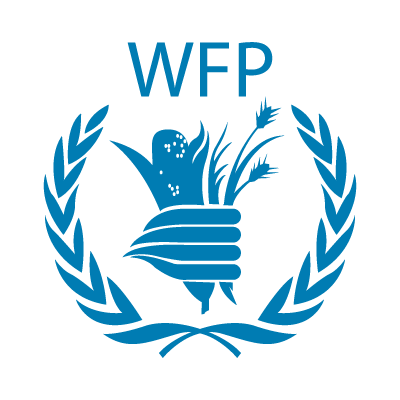 IT Operations Officer Job Addis Ababa at UN WFP | LucyJobs com