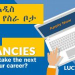 Lucy Jobs Admin