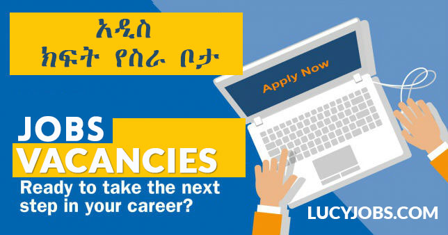 LucyJobs com | Latest Jobs and Vacancies from LucyJobs