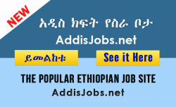 latest jobs in ethiopia